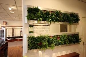 Vách ngăn tường kết hợp cây xanh