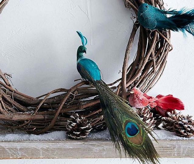 Chim công là một lựa chọn thích hợp dành cho giáng sinh